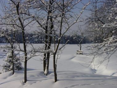 Humusstammtisch Waldviertel - Jänner 2018
