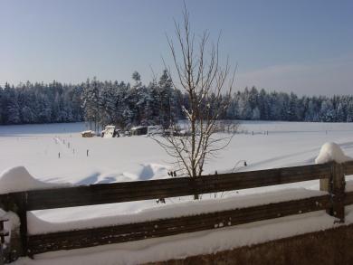 Winterpause Waldviertler Humusstammtisch