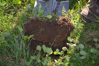 Bodenproben - Abgabe bei den Bodenfruchtbarkeitstagen möglich